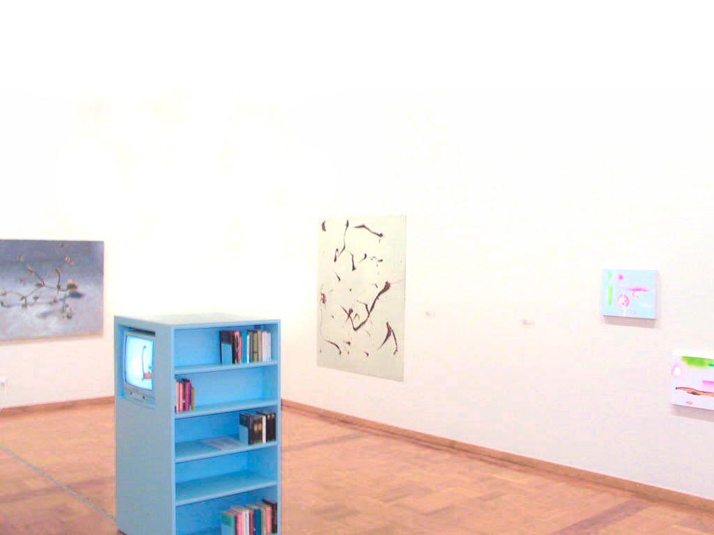 E12003,Babuschka,Sammlungspräsentation Museum zu Allerheiligen Schaffhausen,2003